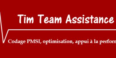 Tim Team Assistance Logo